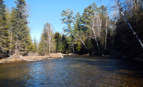 The North Branch of the Au Sable is low and clear.